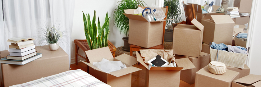 Cheap Furniture Removalists Adelaide